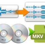 Top DVD Ripper Review – ByteCopy vs. Super DVD Copy