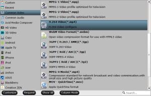 nas-video-format