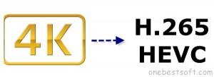 convert-4k-to-hevc