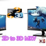 Convert 2D to 3D MKV Video for Enjoying Without Limitation