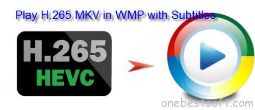 H265 MKV Subtitles Not Showing in WMP