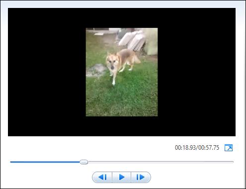 rotate video-1